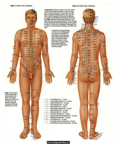 Image of acupuncture meridian chart