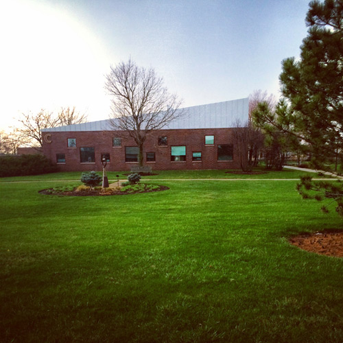 photo of green grass on campus
