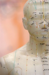 acupuncture meridian lines on male dummy