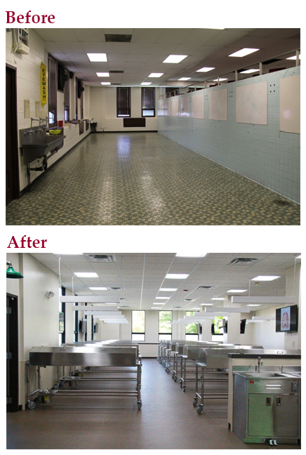 anatomy lab before and after